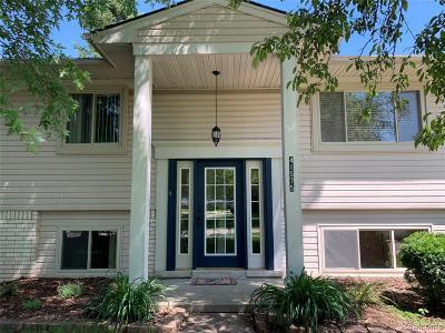 Novi Single Family Home For Sale: 41575 Woodland Creek Drive St