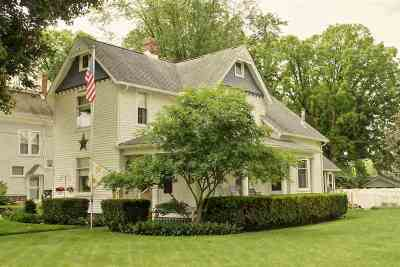 Lenawee County Single Family Home For Sale: 602 Tecumseh Rd