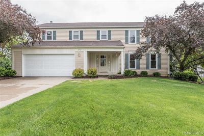 Farmington Hill Single Family Home For Sale: 37972 W Meadowhill