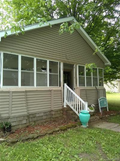 Lenawee County Single Family Home For Sale: 125 S Lakeview Blvd