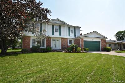 Farmington Hill Single Family Home For Sale: 25246 Branchaster Rd