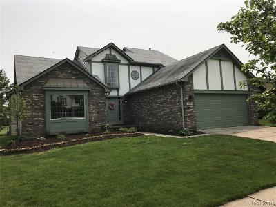 Canton Single Family Home For Sale: 2976 River Meadow Cir E
