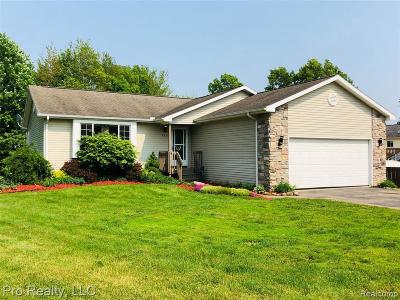 Michigan Center Single Family Home For Sale: 406 Anchor Ln
