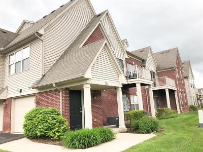 Ann Arbor Condo/Townhouse For Sale: 1384 Addington Ln