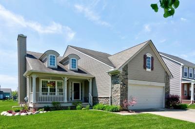 Dexter Single Family Home Contingent - Financing: 8391 Parkridge Dr