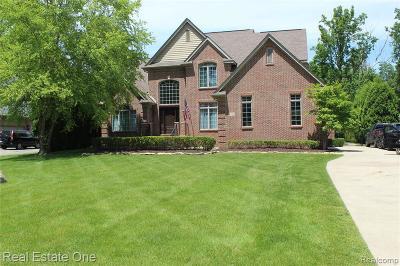 Livonia Single Family Home For Sale: 37700 Saint Martins St