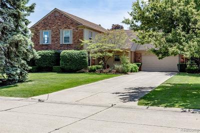 Farmington Hill Single Family Home For Sale: 22615 Shadowglen Dr