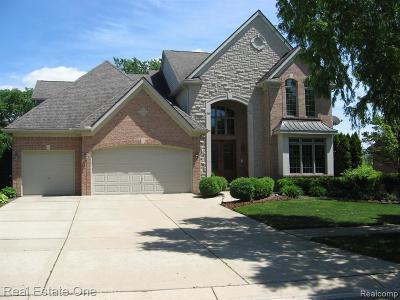 Novi Single Family Home For Sale: 24294 Thatcher Crt