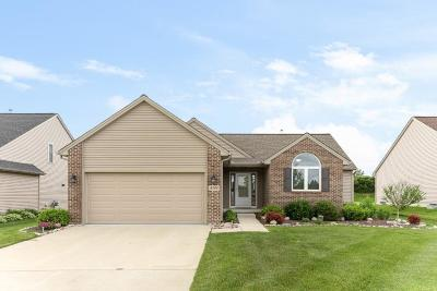 Washtenaw County Single Family Home For Sale: 459 Marblewood Ln