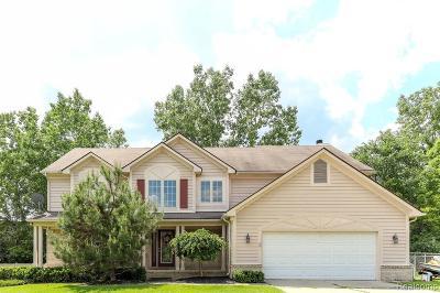 Farmington Hill Single Family Home For Sale: 24587 Elmhurst Ave