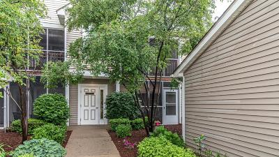Ann Arbor Condo/Townhouse For Sale: 1538 Oakfield Dr