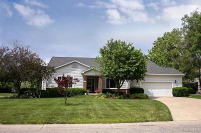 Belleville Single Family Home For Sale: 49410 Sonrisa St
