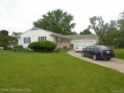 Lansing Single Family Home For Sale: 2206 Holiday Ln