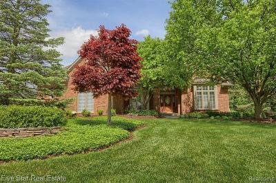 South Lyon Single Family Home For Sale: 9003 Stoney Creek Dr
