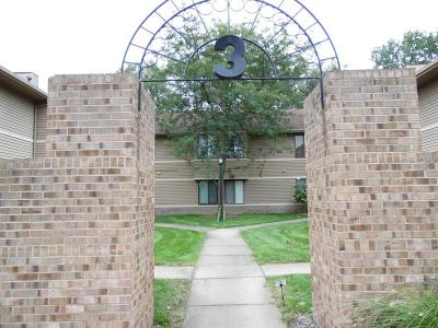 Ann Arbor Condo/Townhouse For Sale: 250 Briarcrest Dr
