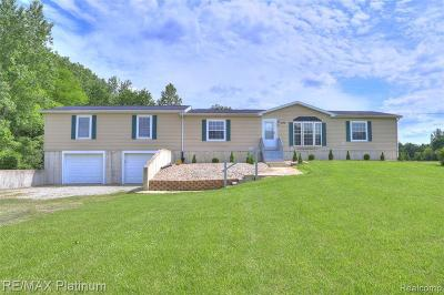 Lenawee County Single Family Home For Sale: 3175 Ives Rd