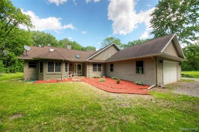 Williamston Single Family Home For Sale: 5060 Horstman Rd