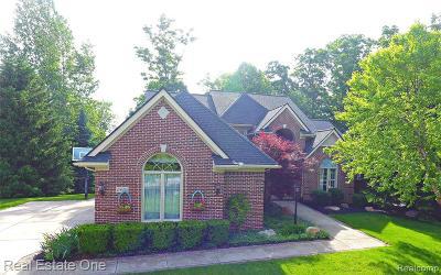 Farmington Hill Single Family Home For Sale: 29454 Bradmoor Crt
