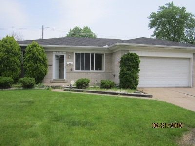 Single Family Home For Sale: 28050 Cunningham