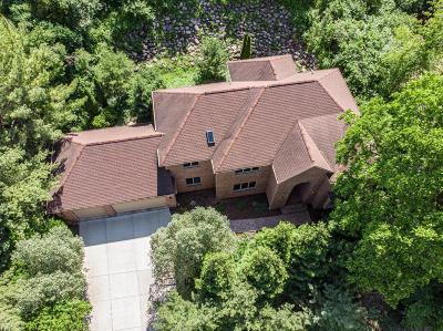 Ann Arbor Single Family Home For Sale: 588 Green Rd