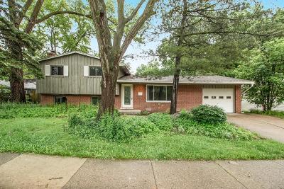 Ann Arbor Single Family Home For Sale: 1246 Kuehnle St