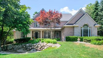 Ann Arbor Single Family Home For Sale: 1260 Waterways