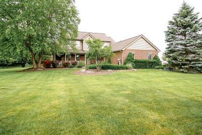 Ann Arbor Single Family Home For Sale: 6160 Vineyard Ave