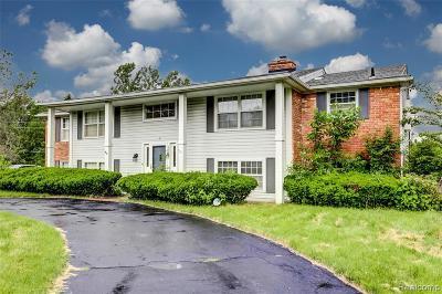 Farmington Hill Single Family Home For Sale: 26290 Kiltartan St