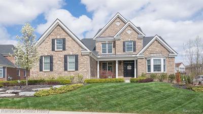 Novi Single Family Home For Sale: 50946 Denali Crt
