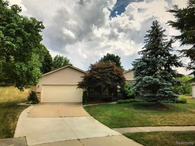 Novi Single Family Home For Sale: 24491 Riverview Ln