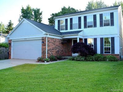 Washtenaw County Single Family Home For Sale: 3108 Turnberry Ln
