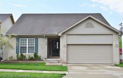Lake Orion Single Family Home For Sale: 39 Eagle Ridge Rd