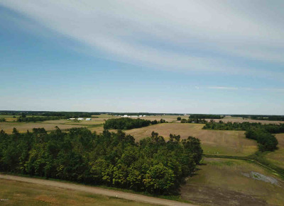 Waldron MI Residential Lots & Land For Sale: $262,500
