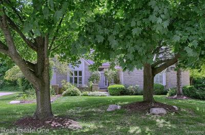 Farmington Hill Single Family Home For Sale: 29157 Glenbrook Dr