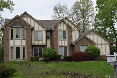Farmington Hill Single Family Home For Sale: 38050 Eric Crt