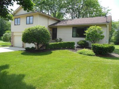 Ann Arbor Single Family Home For Sale: 5862 E Silo Ridge Dr