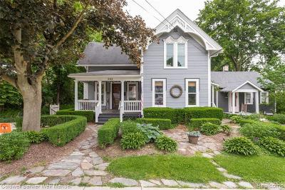 Northville Single Family Home For Sale: 521 W Main St