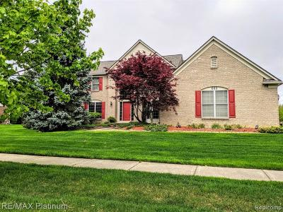 Canton Single Family Home Contingent - Financing: 338 Westbourne Crt