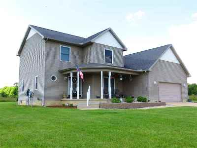 Britton MI Single Family Home For Sale: $319,000