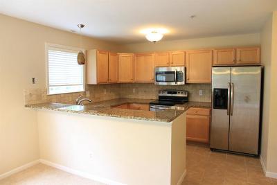 Ann Arbor Condo/Townhouse For Sale: 2868 N Barclay Way