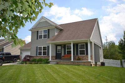 Lenawee County Single Family Home Contingent - Financing: 404 Oak Tree Drive
