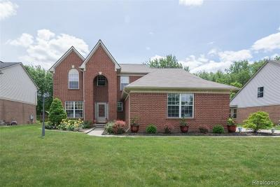 Canton Single Family Home For Sale: 42519 Woodwind Ln