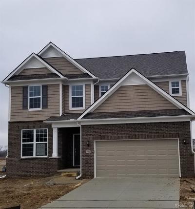 Ann Arbor Single Family Home For Sale: 837 Groveland Cir