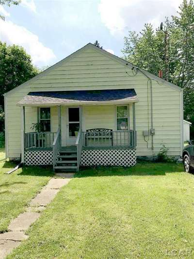 Lenawee County Single Family Home For Sale: 1782 Taylor