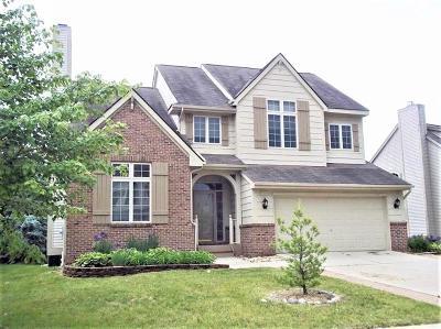 Ann Arbor Single Family Home For Sale: 5965 Quebec