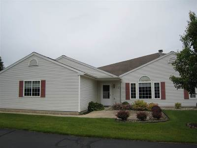 Lenawee County Condo/Townhouse For Sale: 703 Carriage