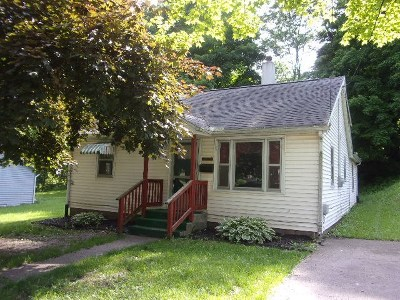 Lenawee County Single Family Home For Sale: 223 Lane