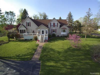 Belleville Single Family Home For Sale: 23800 Clark Rd