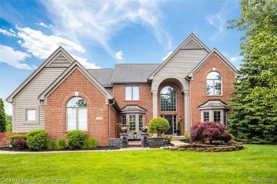 Novi Single Family Home For Sale: 23729 Broadmoor Park Ln