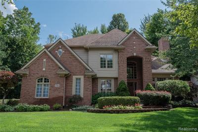 Novi Single Family Home For Sale: 25562 Arcadia Dr